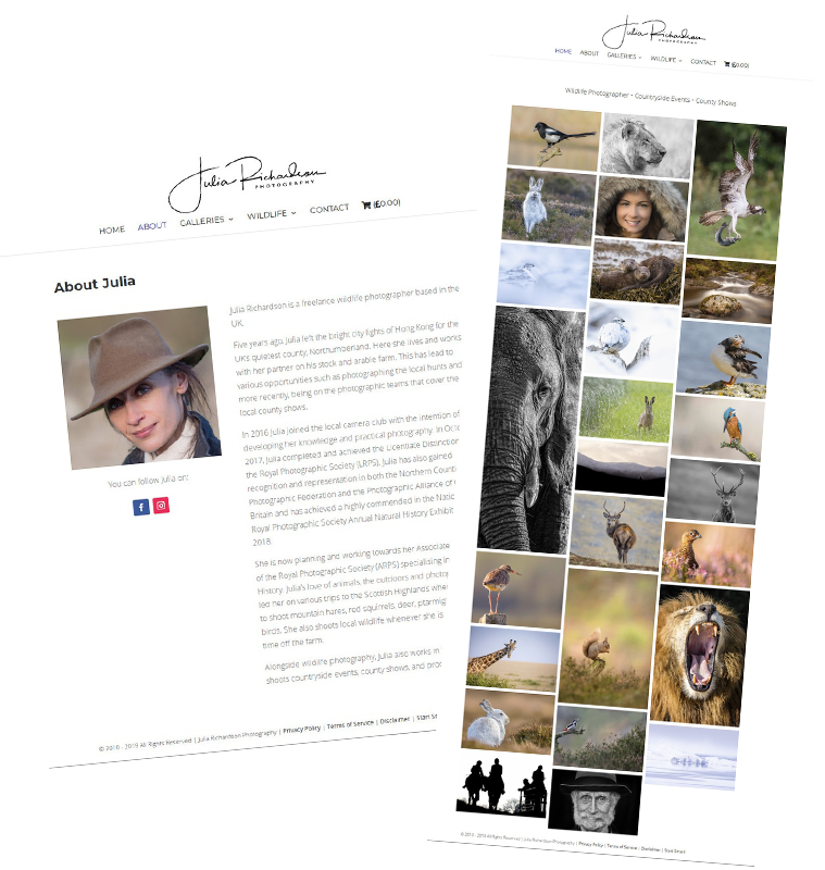 Julia Richardson Website Design